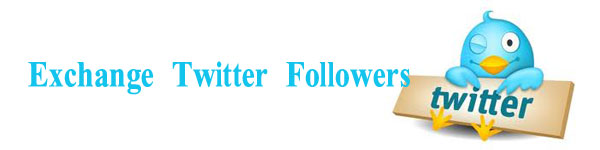 Add Twitter Followers